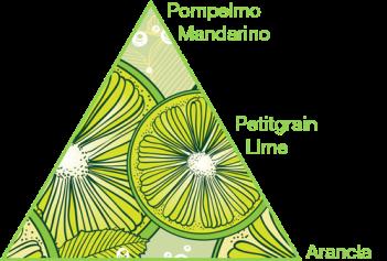 piramide1.png