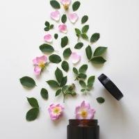 """""""Ecobiolovers, benessere naturale"""", il mio nuovo progetto."""